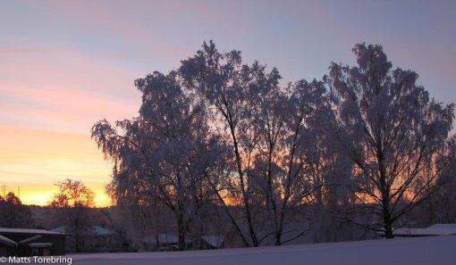 Solen på väg upp borta i öster. Foto från mitt kontor.