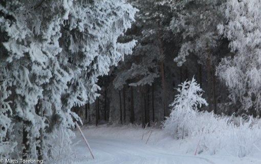 En liten småväg strax söder om Aneby
