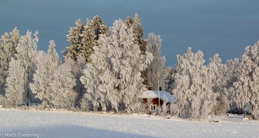 Här i Härjestad byggde en god vän en villa för många år sedan.
