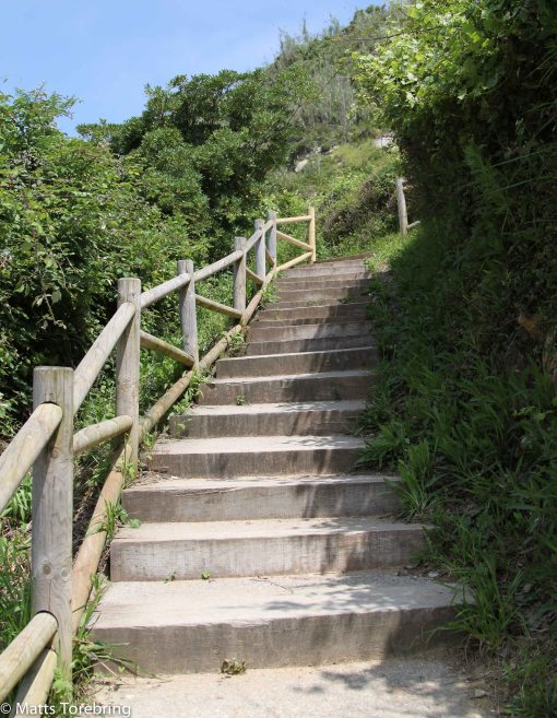Jag tvekade först till att få med mig Birgitta upp i alla trappor.