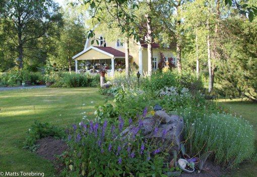 Här bor Christer & Anita i en minst sagt praktfull trädgård full av blommor