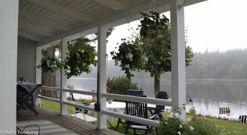 Från verandan på sommarstugan