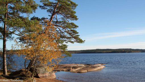 Badplatsen vid  Assjösjön