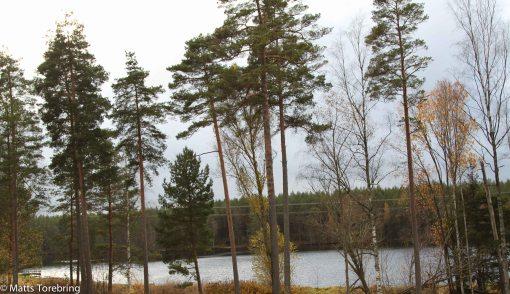 Aborragölen vid infarten till Eksjö från Nässjö