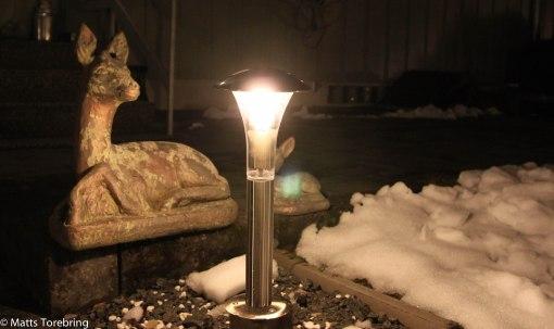 I veckan har min elektriker bytt ut fjorton lampopr i trädgården.