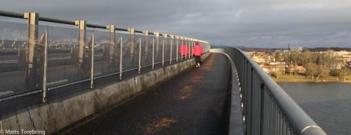 En fantastiskt bra utformad gång- & cykelled över Vättern