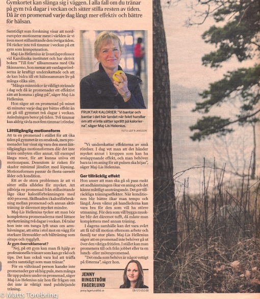 Dagens Industri 13 januari 2014