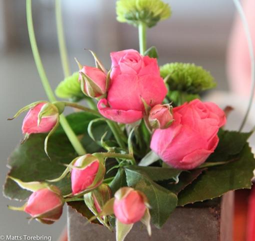 Utsökt vackra blommor på borden.