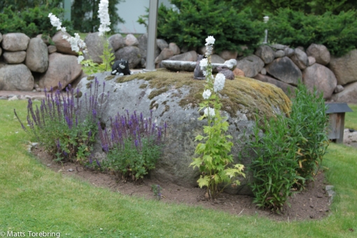 Min steniga trädgård