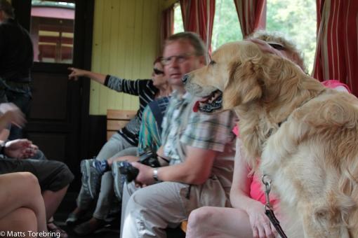 Även hundar är med på tåget.