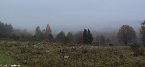 Gården Härjestad utanför Aneby