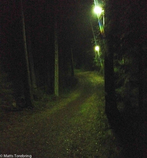 Elljusspåret 3 km