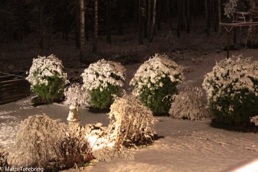 Första snön vintern 2014