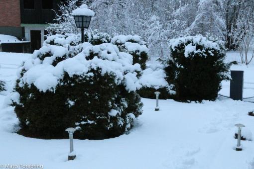 Tisdag morgon på Skogsgatan i Aneby