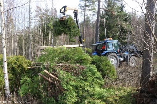 Traktor & Skogskärra fick inte köra in i trädgården