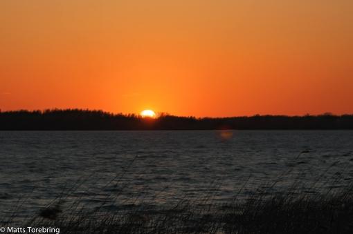 Solen lämnar oss denna kalla blåsiga fredagskväll