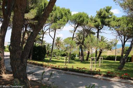 En villaträdgård