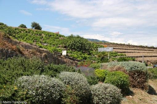 Strax för infaten till Collioure
