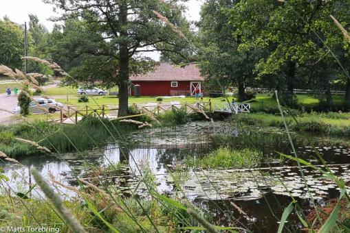 Den gamla dammen före kvarnen