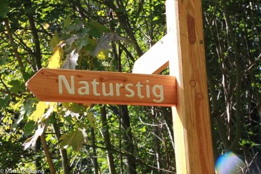 Runt hörnet på Stampens Kvarn finns en fantastisk naturstig & cykelbana
