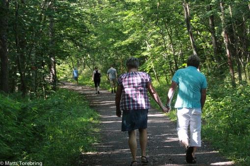 Det är många som är ute och njuter av vägen genom ådalen